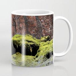 Rainbow Cavalcade Woods Forest Enchanted Oregon Pacific Northwest Coffee Mug