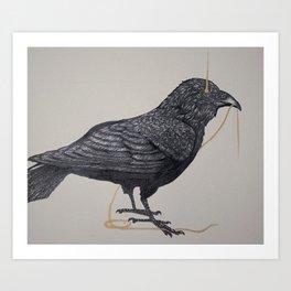Old Corvus Corax Art Print