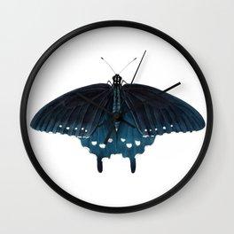 Pipevine Swallowtail (Battus philenor) Wall Clock