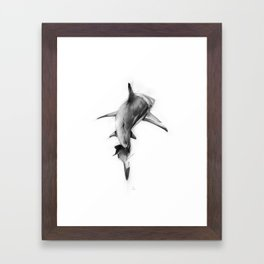 Shark II Framed Art Print