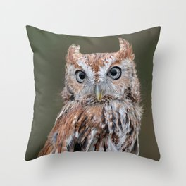 Eastern Screech Owl 1 Throw Pillow