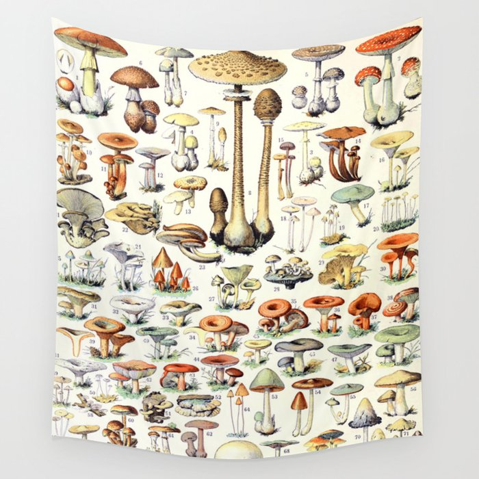Adolphe Millot - Champignons B - French vintage poster Wall Tapestry