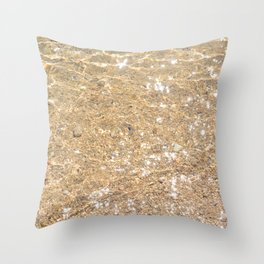 Clear sea Throw Pillow