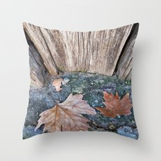 002 Throw Pillow