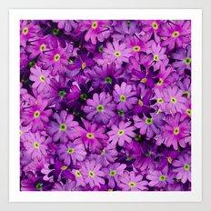 Purple Wild Flowers Art Print