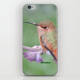 DO NOT Raid My Patch of Sage iPhone Skin