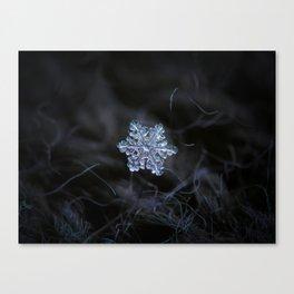 Real - snowflake - 2017-12-07 1 Canvas Print