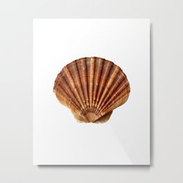 Sea trasure Metal Print