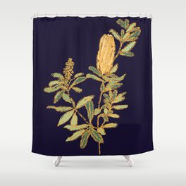Banksia on Indigo Blue Botanical Illustration Shower Curtain