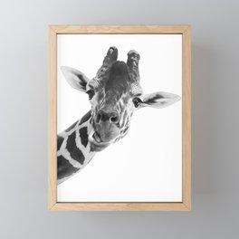Silly Giraffe B&W // Wild Animal Portrait Cute Zoo Safari Madagascar Wildlife Nursery Ideas Decor Framed Mini Art Print