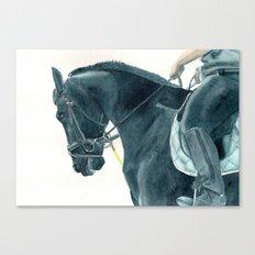 Friesian Horse 2 Canvas Print