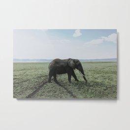 Ngorongoro Crater, Tanzania Metal Print