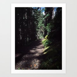 low light hike Art Print