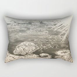 MoonSea EcoSystem Black and White Rectangular Pillow