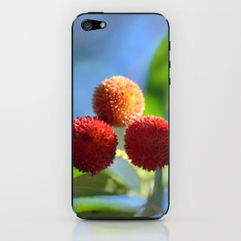 Strawberry tree fruits 8697b iPhone Skin