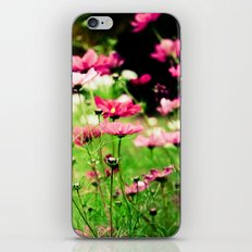 Light Hearted iPhone & iPod Skin