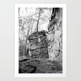 Perched Atop Art Print