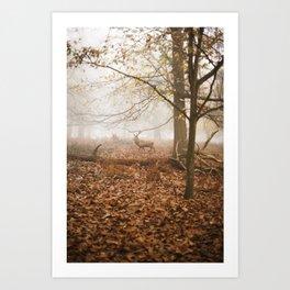STAG#1 Art Print