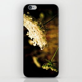 d.a.r.k. Queen Anne's Lace iPhone Skin