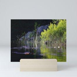 Spring Green Reflection Dark Water Mini Art Print