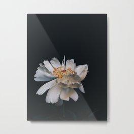Coral charm III Metal Print