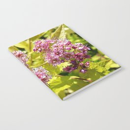 Lilac flowers Notebook
