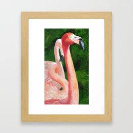 Florida Flamingos Framed Art Print