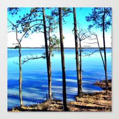 York River Canvas Print
