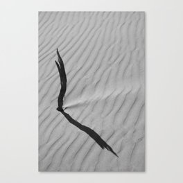 The Drowning in the Desert Canvas Print