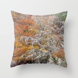 Orange and Silver Throw Pillow