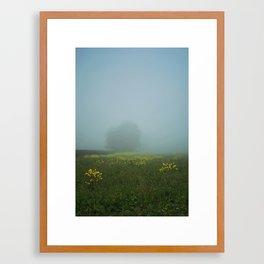 Morning mist 05/10 Framed Art Print