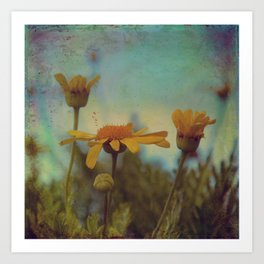 The beauty of simple things Art Print