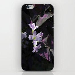 violet flower iPhone Skin