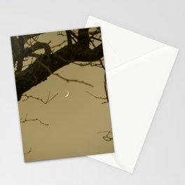 Luz en la Lejania Stationery Cards