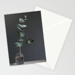 Eucalyptus leaves in the afternoon Stationery Cards