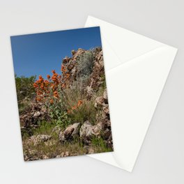 Desert Wildflowers & Cacti in Spring Stationery Cards