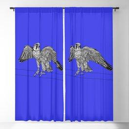 Lanner falcon - bird of prey - ink illustration - blue Blackout Curtain