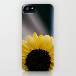Tournesol iPhone Case