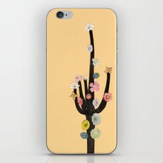 Flowering Cactus iPhone & iPod Skin
