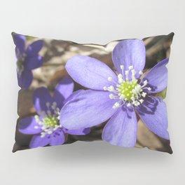 Wild and Blue Pillow Sham
