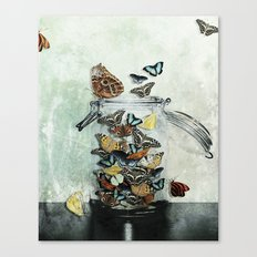 Butterfly Jar Canvas Print