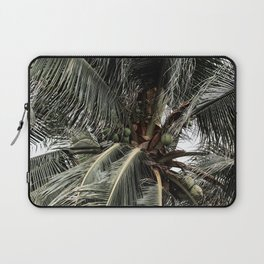 Green Coconuts Laptop Sleeve