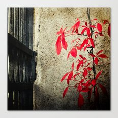 Castle Gate Red Creeper Canvas Print