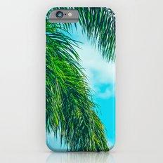 Tropical Palms Maui Hawaii Slim Case iPhone 6s