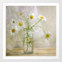 daisies Art Prints featuring Daisies by Mandy Disher