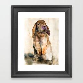 BUNNY #5 Framed Art Print