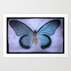 Butterfly Wing of Blues Art Print