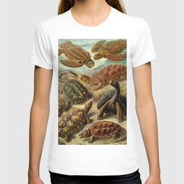 Sea Turtle Collage-Ernst Haeckel T-shirt