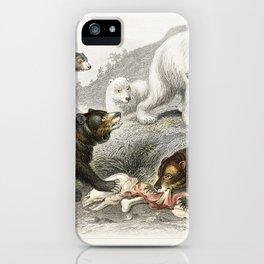 Grisly Bear, European Brown Bear ,American Black Bear, Polar Bear from A history of the earth and an iPhone Case