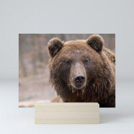 Beautiful Brown Bear Mini Art Print